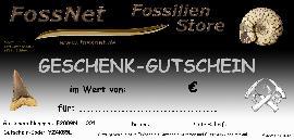 FossNet Geschenk-Gutschein - Bild © FossNet FossilienStore