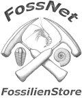 FossNet Fossilien